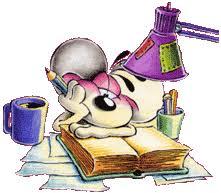 Huiswerkbegeleiding <br> (10-14 jr)
